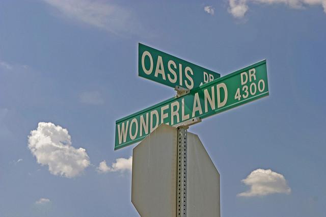 wonderland oasis
